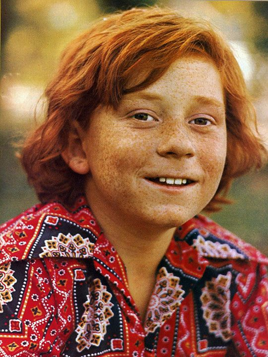 danny partridge danny bonaduce the partridge family
