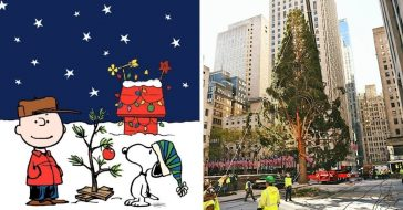 people compare 2020 rockefeller center christmas tree to charlie brown christmas tree