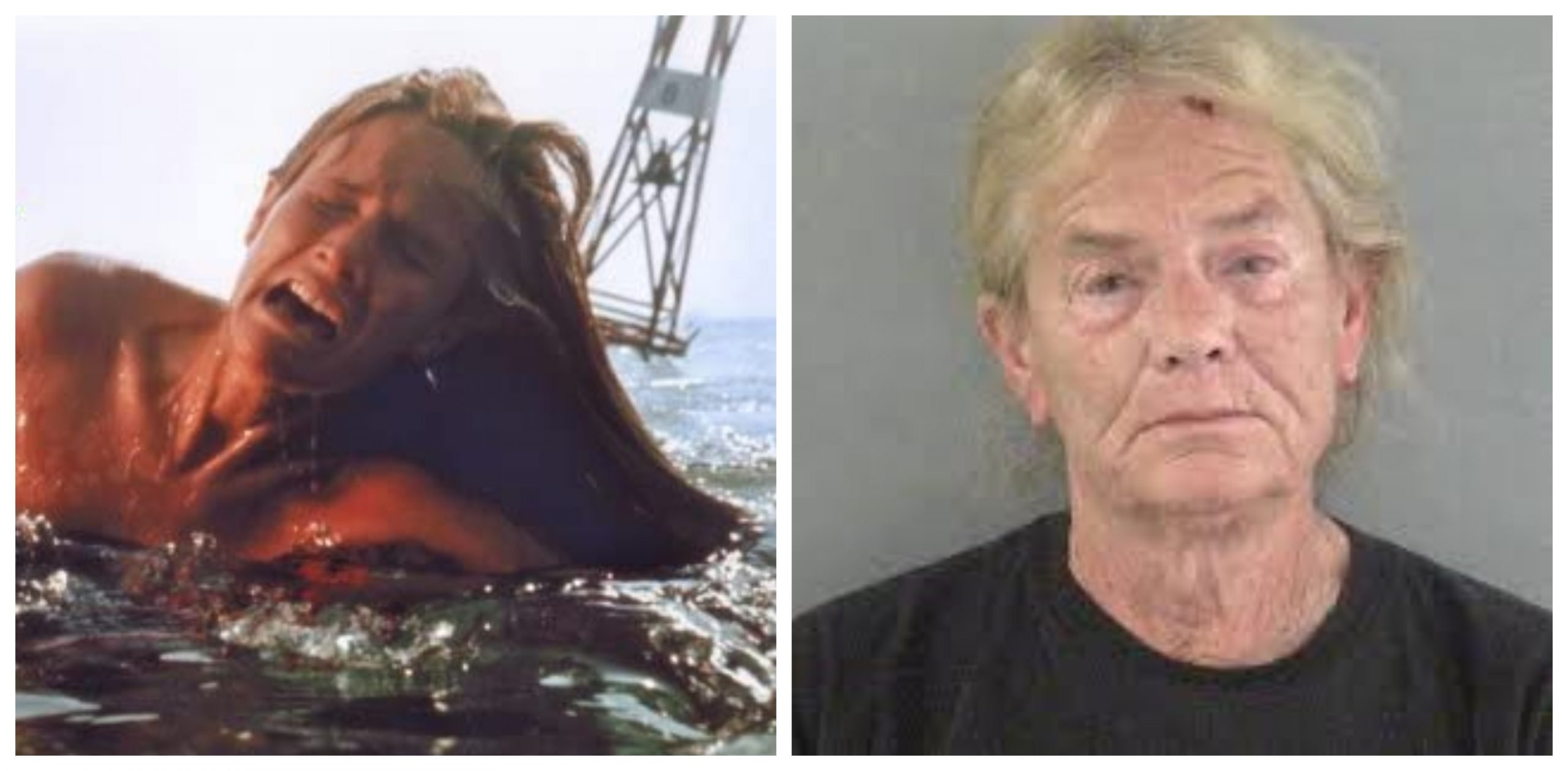 jaws cast then and now