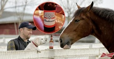 budweiser coke pepsi sitting out this year's super bowl