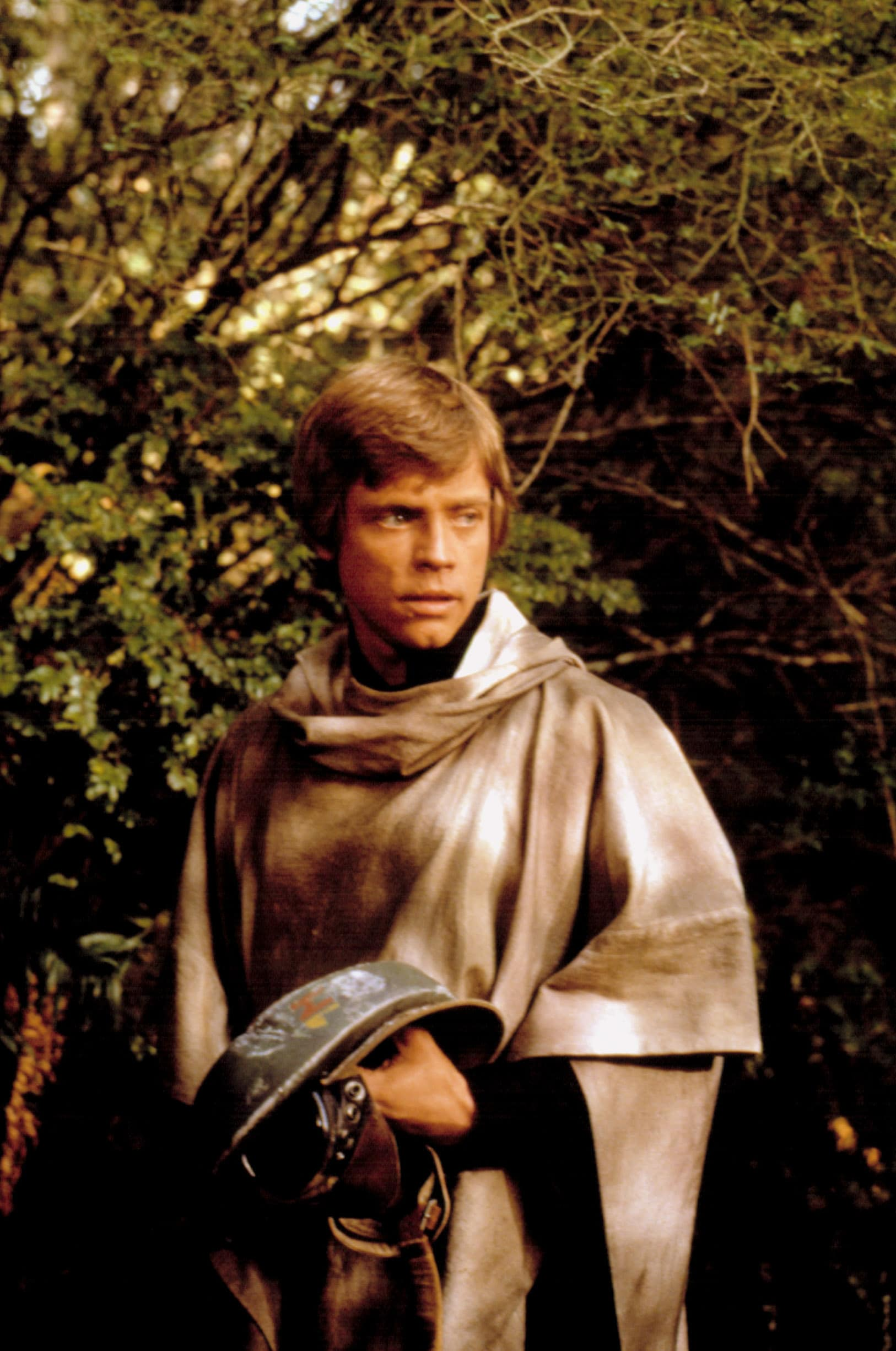 STAR WARS: EPISODE VI - RETURN OF THE JEDI, Mark Hamill