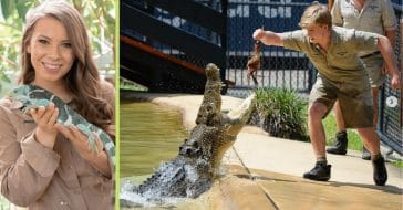 Bindi Irwin reportedly voiced concern for her brother Robert's behavior