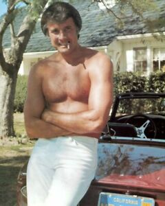 Waggoner frequently played a hunk type character in many titles