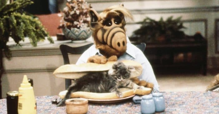 NBC Execs Worried About ALF's Cat-Eating, Beer-Drinking Antics