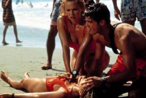 Pamela Anderson, David Charvet, 1989-2001