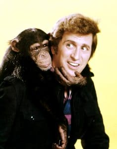 ME AND THE CHIMP, Ted Bessell, 1972