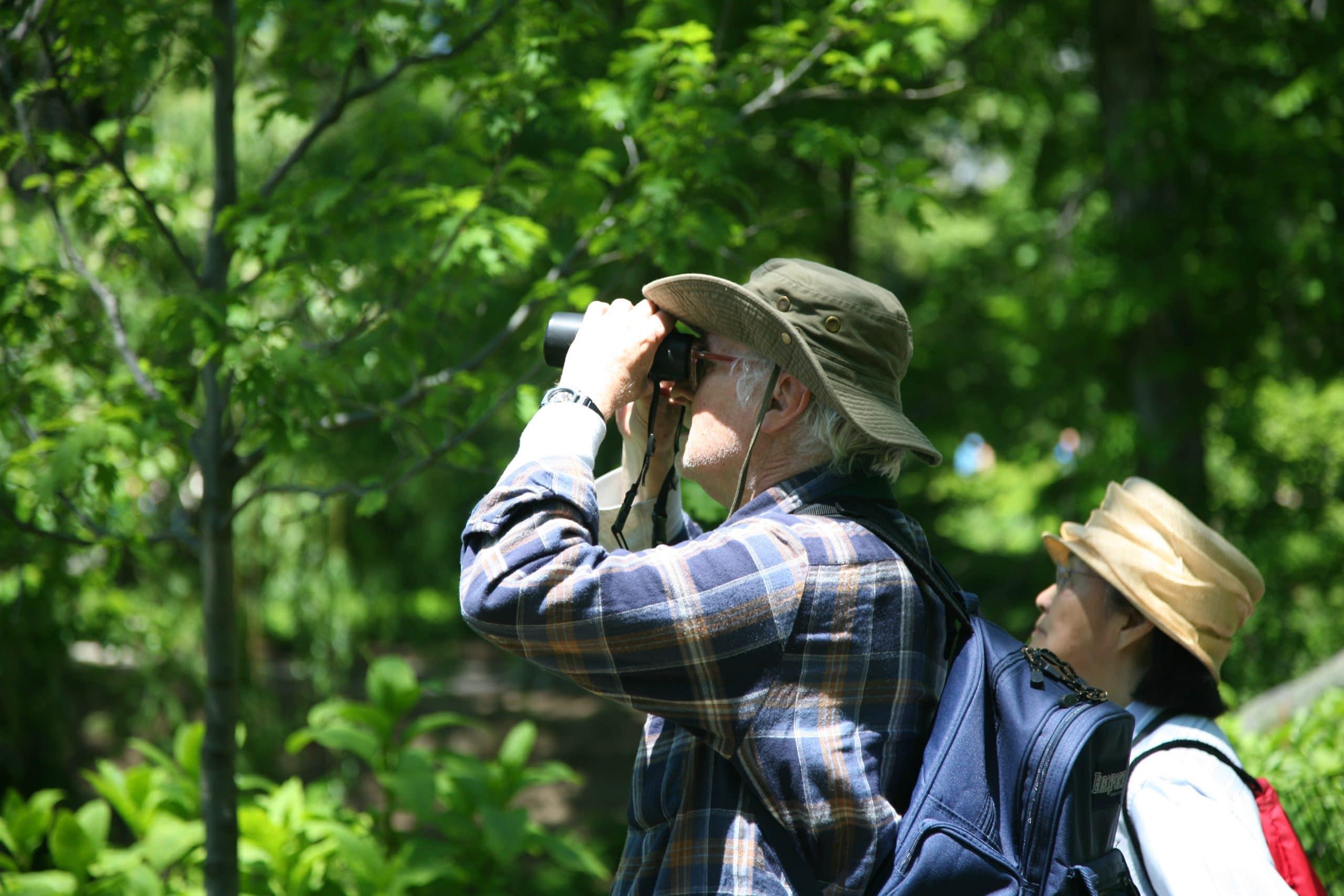 seniors bird watching