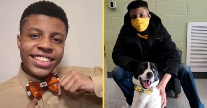 Teen Makes Over 1,000 Bowties To Help Shelter Dogs Get Adopted