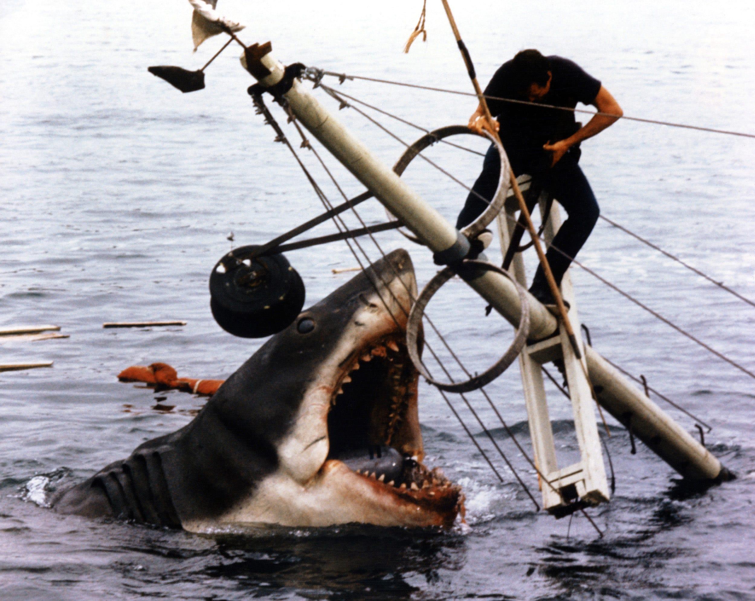 JAWS, 1975 shark