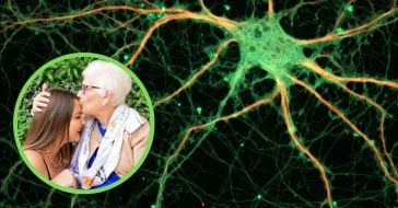 Considering the grandmother neuron