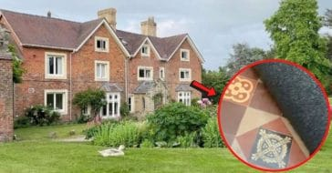 Couple Discovers Tiled Gem Beneath Carpet Inside Their 1830s Home