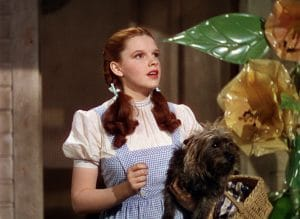 Judy Garland as Dorothy in her signature blue gingham dress for The Wizard of Oz