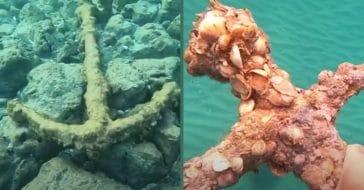 Diver Pulls 900-Year-Old Crusader Sword From Ocean Floor